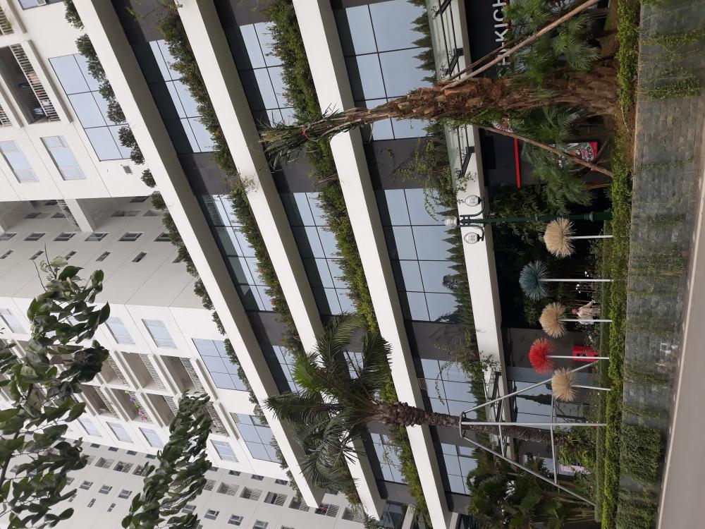 Cho thuê căn hộ Tòa A2 Ecolife Capitol 58 Tố Hữu, 2 phòng ngủ đủ đồ, 75m2, 14triệu/tháng 744302