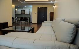 Chính chủ cho thuê gấp căn hộ 29T1 N05 – 155m2- 17 triệu/th– LH 0976037566