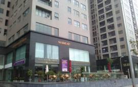 Cho thuê căn hộ chung cư Meco Complex 102 Trường Chinh, 120m2, 3 ngủ, đồ cơ bản giá 12.5 tr/th