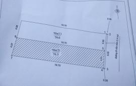 Bán 80m2 đất thổ cư Tiên Dương – Đông Anh – Hà Nội