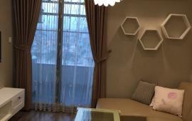 Căn hộ chung cư Royal City- 72A Nguyễn Trãi cho thuê, diện tích 54m có 1PN nhà đẹp, 13tr/th