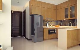 Cho thuê căn hộ chung cư khu vực Cầu Giấy. Giá 10tr/tháng