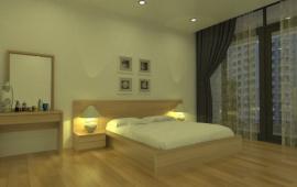 Cho thuê căn hộ chung cư tại 93 Lò Đúc, 120m2, 3 phòng ngủ, đủ nội thất sang trọng