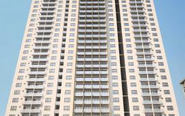Cho thuê sàn thương mại tầng 1 - dự án CT4 Vimeco, Nguyễn Chánh, diện tích 131m2