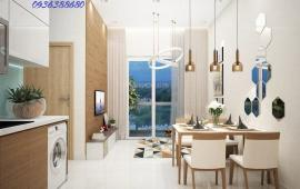 Cho thuê căn hộ chung cư CT2 Nghĩa Đô, 172m2, 3 phòng ngủ, full nội thất, mới 100%