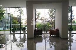 Cho thuê CHCC Ecolife Tây Hồ, Võ Chí Công, Tây Hồ, 115m2, 3 phòng ngủ, đồ cơ bản, 7 triệu/th