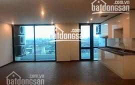 Cho thuê căn hộ chung cư N09B1 tại khu đô thị mới Dịch Vọng