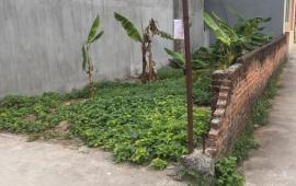 Bán Nhanh lô đất Phúc Lợi 38,5m2 giá chỉ 28tr/m, Liên Hệ: 01689427808