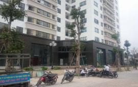Cho thuê căn hộ 3 phòng ngủ chung cư CT2 Phùng Khoang, Trung Văn, 0918796921