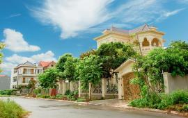 Bán đất nền liền kề vị trí đẹp nhất KĐT V-Green City Phố Nối, Hưng Yên