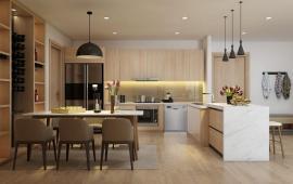 Cần cho thuê căn hộ 2pn căn số 3 tòa A1 dự án An Bình City giá 8 triệu/tháng không đồ 0985024383