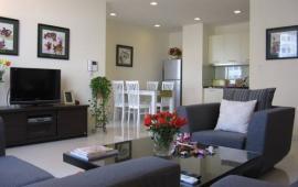 Cho thuê căn hộ Richland, 2 PN, 95m2, đầy đủ nội thất, giá thuê 12tr/th