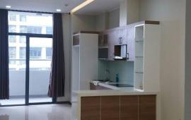 Chung cư Tràng An Complex cần cho thuê gấp căn hộ 94m2, 2PN(1 phòng kho) nội thất cơ bản, 12 tr/th