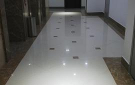 0902 999 118 : cho thuê căn hộ Tòa Mecocomplex 102 trường chinh giá từ 9 - 15tr  vào ở được luôn.