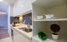 Cho thuê căn hộ chung cư Artemis số 3 Lê Trọng Tấn, Thanh Xuân, Hà Nội, 2n, dd. 0981261526