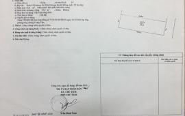Bán 55m2 đất xóm giữa Cổ Dương, Tiên Dương, Đông Anh, Hà Nội