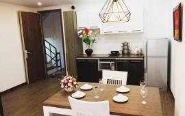 Cho thuê căn hộ dịch vụ penhouse tại tòa nhà sumi số 2 ngõ 41 Linh Lang. 0904.489.984