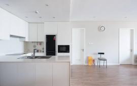 Cho thuê chung cư Ngọc Khánh Plaza, 162m2, 3PN, đồ cơ bản, giá 15 triệu/tháng