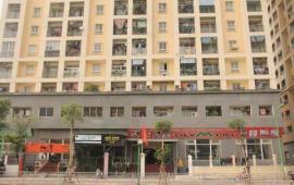 Cho thuê chung cư tòa A1 229 Phố Vọng, Hai Bà Trưng, 173m2, 3 phòng ngủ, đủ đồ. LH: 01687847288