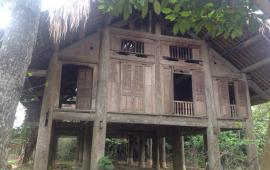 Bán gấp nhà sàn Cổ Đông, Sơn Tây – Hà Nội
