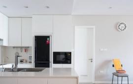 Cho thuê căn hộ tại Ngọc Khánh Plaza, đối diện đài truyền hình, DT: 161m2, 3PN, giá 17 triệu/tháng