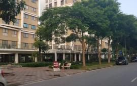 Cho thuê chung cư Đặng Xá, 2 PN, 1 vệ sinh