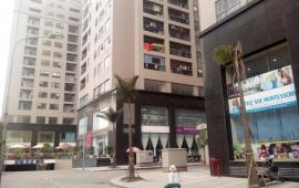 Cho thuê căn hộ chung cư Meco, 102 Trường Chinh, 80m2, 2 phòng ngủ, full đồ, giá 10tr/th