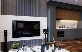 BQL dự án Vinhomes Metropolis cho thuê căn hộ từ 1PN đến 4PN, dt 55m2 - 200m2, giá từ: 17tr/tháng