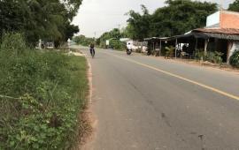 Chính chủ cho thuê đât xã Long Chữ huyện Bến Cầu tỉnh Tây Ninh 4.500m2