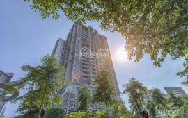 Chủ nhà gửi cho thuê căn  Penthouse dạng Duplex  ở Skypark  hơn 300m2 + 4 PN( Mới hoàn thiện )