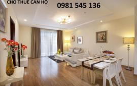 Cho thuê căn hộ chung cư phố Đội Cấn, Ba Đình,110m 2PN, nội thất rất đẹp, 11 tr/th. LH 0981 545 136