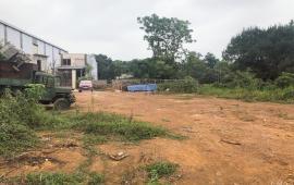 Bán 1.000m2 đất lô góc đường 6.5m đã có sổ đỏ, tại Phú Cát, sát với khu CNC, nhà máy in tiền. cực